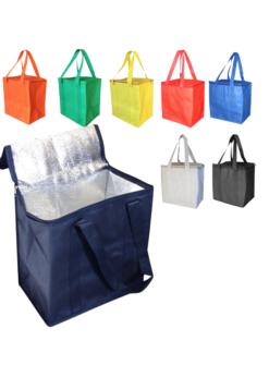 Large NW Zip Cooler Bag